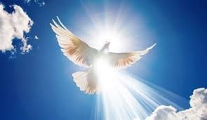 Dove and Holy Spirit