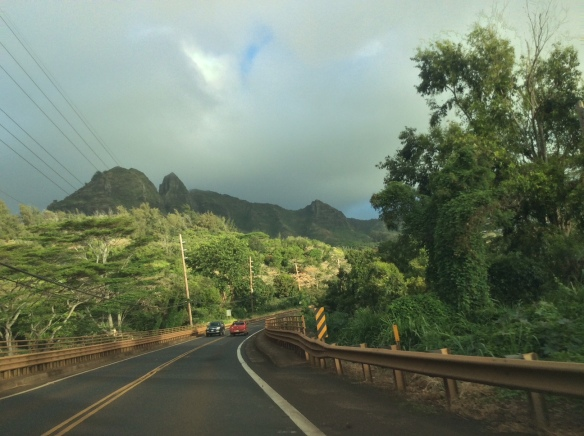 Hawaii-road