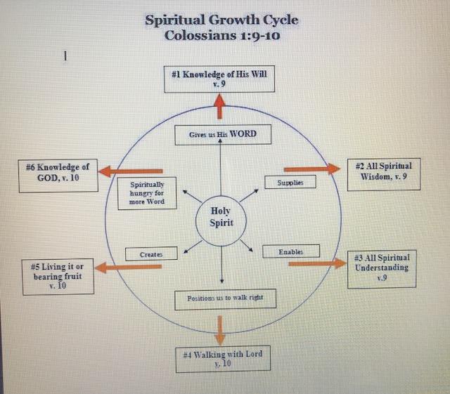 Life Cycle Christian
