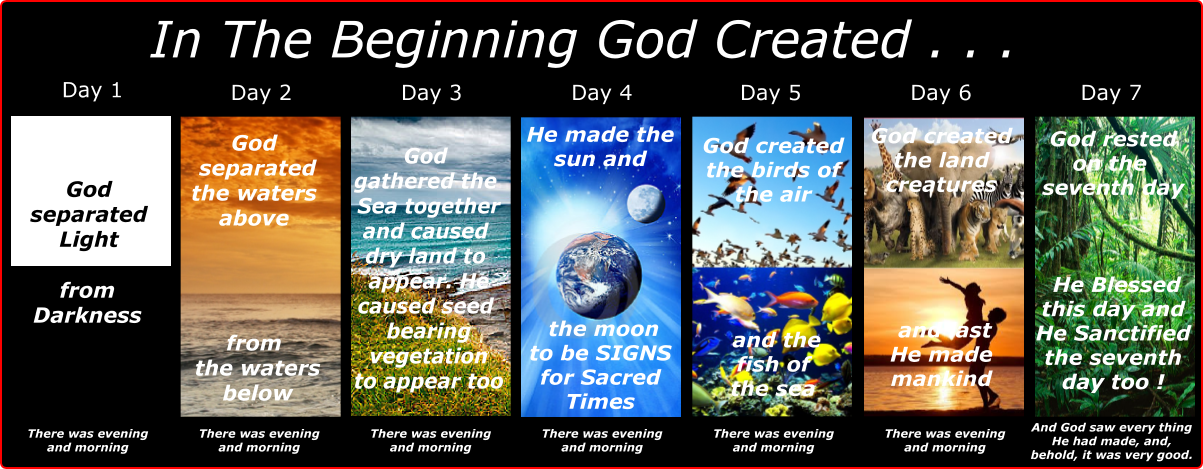 Genesis8 Days-of-Creation-A1